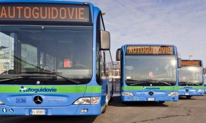 Autobus Pavia si cambia informazioni anche via WhatsApp