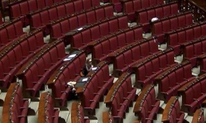 Elezioni regionali 2018 | Tutti i parlamentari eletti nella Bassa