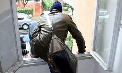 Furto in appartamento: il proprietario sorprende il ladro e sfodera la contromossa