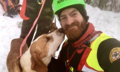 Soccorso alpino salva due cani scivolati in un dirupo FOTO