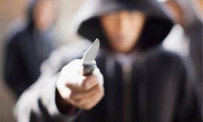 Machete in pugno rapina la farmacia