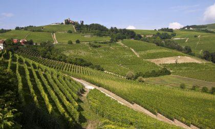 Vinitaly Padiglione Lombardia Oltrepò Pavese punta sul Pinot Nero
