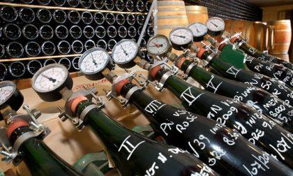 Zucchero nel vino, sequestrati 280 ettolitri di Pinot grigio