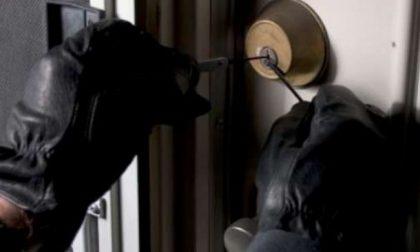 """""""Presto accorrete mi hanno rubato in casa"""", ma si era inventata tutto"""