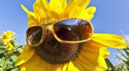 L'estate continua: ecco le previsioni meteo del week end