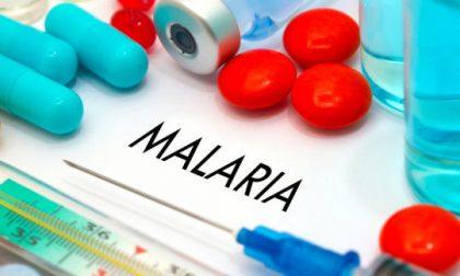 Febbre altissima per giorni: bambino di 2 anni ha contratto la malaria