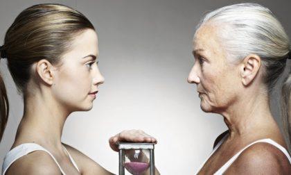 Radici biologiche dell'invecchiamento: a Pavia si sfida la morte
