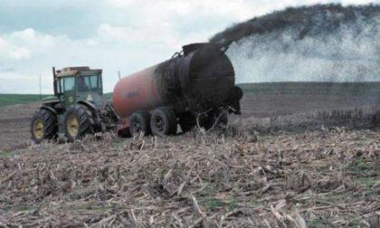 Fanghi in agricoltura: potenziare i controlli sulla composizione dei reflui