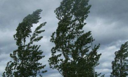 Il forte vento ha portato qualcosa di buono: a Pavia calano le polveri sottili