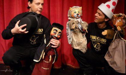 A Pavia arriva Pinocchio, un burattino contro il bullismo FOTO e VIDEO