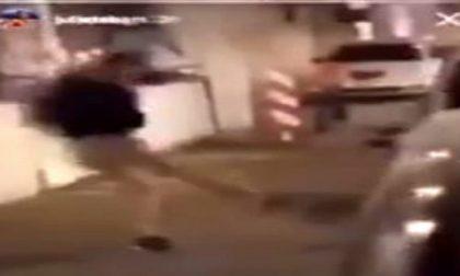 Gallina presa a calci come un pallone: caccia ai bulli VIDEO