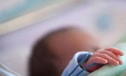 Nasce prematura e muore dopo soli quattro mesi