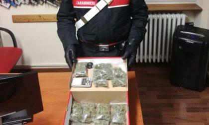 Controlli antidroga a Pieve Porto Morone, un arresto