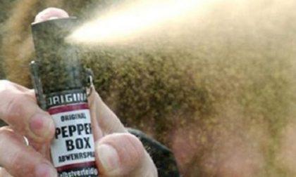 Spruzzano spray al peperoncino a scuola, 10 intossicati