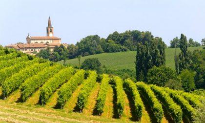 """Si apre l'era """"spaziale"""" del vino: in Oltrepò vigne sorvegliate dai satelliti"""