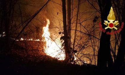 La grigliata finisce per distruggere un bosco: 13 milioni di multa a due ventenni