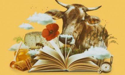 """""""Historiae casei"""": il formaggio sale in cattedra"""