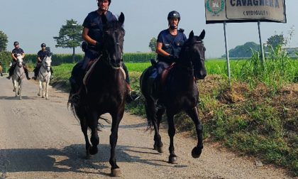 Carabinieri a cavallo controllano le aree rurali e impervie del Pavese