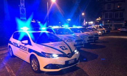 Negozio etnico a Vigevano: alimenti scaduti da oltre 1 anno, tra cui anche omogeneizzati