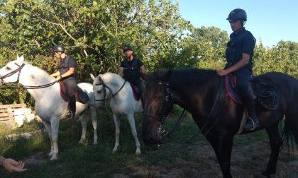 Potenziato il controllo nell'area Vogherese: un arresto e una denuncia