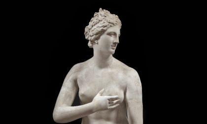 A Pavia si cerca di scoprire la bellezza assoluta della Venere de' Medici