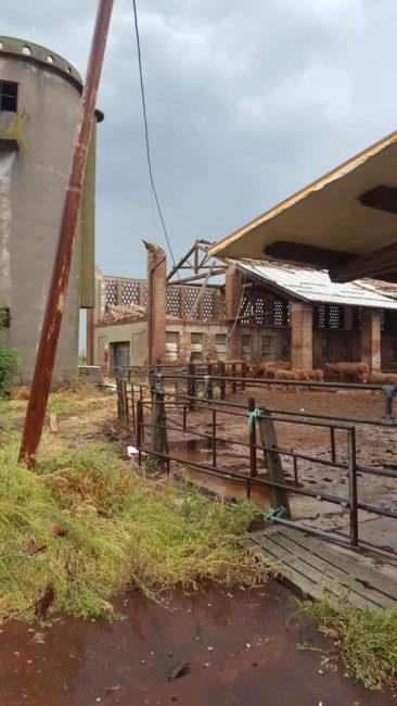 Tomba d'aria nel Pavese: danni in tutta la provincia FOTO