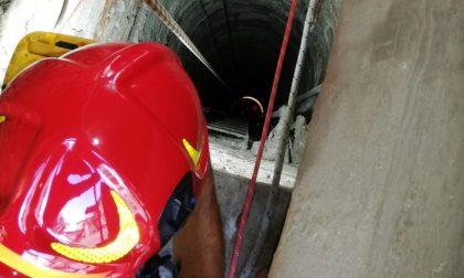 Gattina precipita in un pozzo profondo 15 metri:  salvata dai Vigili del Fuoco