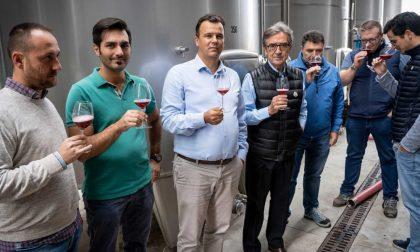 Terre d'Oltrepò: chiusa la vendemmia del Pinot, ora si passa alle rosse