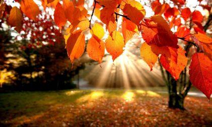 Equinozio autunno 2019 è oggi 23 settembre
