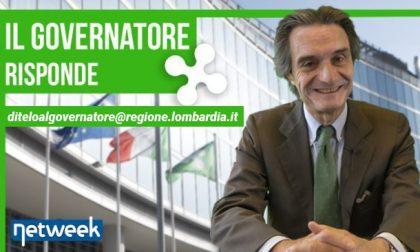 Al via un bando da 6 milioni di euro per le nostre foreste | Il governatore risponde