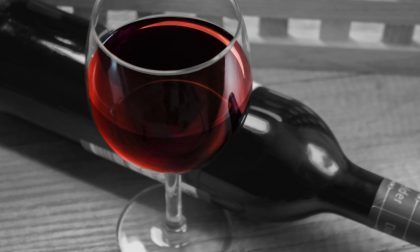 Terre d'Oltrepò: il vino Novello a Broni e cantine aperte a La Versa