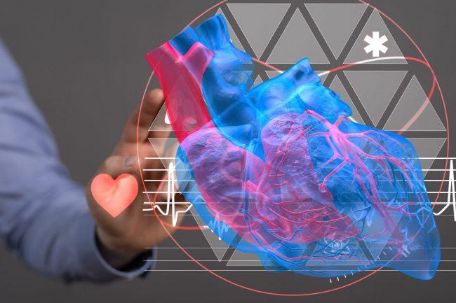 Prevenzione cardiovascolare e stile di vita