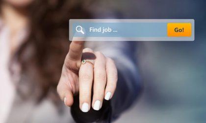 Mercato del lavoro: una giornata formativa e di orientamento in Lomellina
