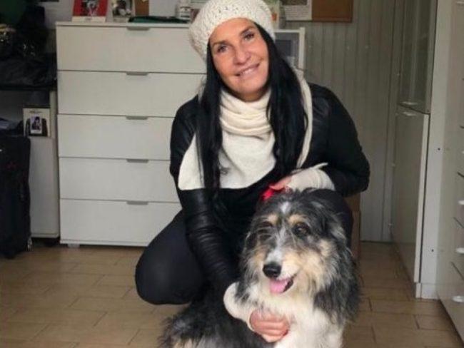 A Natale adottate un cane dai canili della Lombardia VIDEO