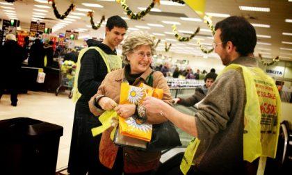 Colletta alimentare, il cuore grande dei pavesi: donati oltre 50mila chili di cibo