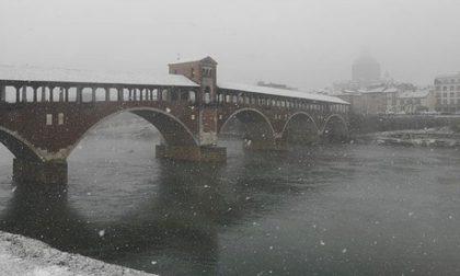 La magia della neve a Pavia raccontata attraverso Instagram FOTO
