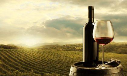 Made in Lombardia, Regione fa rinascere il proprio vino a Riccagioia