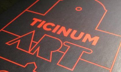 Ticinum Art, il gioco ambientato a Pavia e firmato da 6 artisti pavesi