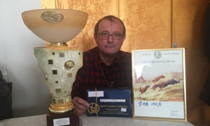Vino contraffatto: il mediatore vinicolo si dichiara innocente davanti al Gip