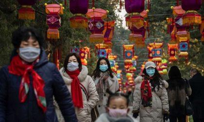 """Psicosi coronavirus: capodanno cinese annullato, ragazzino con occhi a mandorla insultato (""""Sei infetto"""")"""