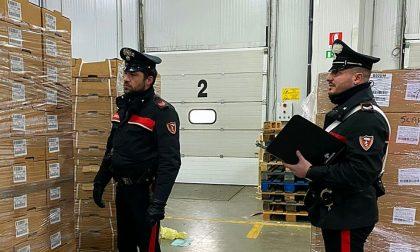 Trafugavano ingenti quantità di pesce dall'azienda dove lavoravano: arrestati 3 uomini