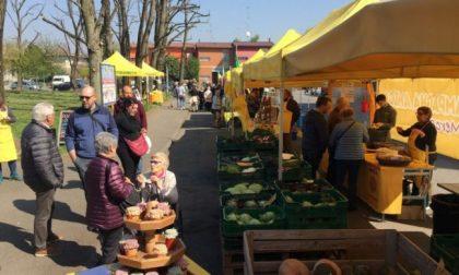 Campagna Amica, domenica torna il mercato contadino a Voghera