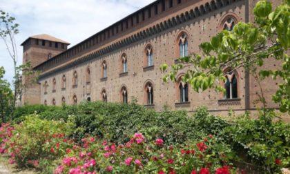 Musei Civici: riaprono al pubblico il Cortile del Castello Visconteo e le sale museali