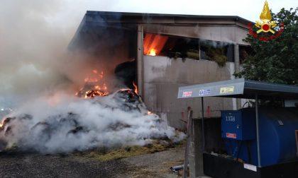 Torricella Verzate, vasto incendio in un fienile: Vigili del Fuoco al lavoro GALLERY