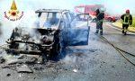 Autovettura distrutta dalle fiamme a Siziano VIDEO