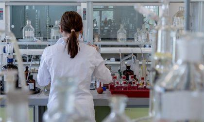 "Coronavirus, studio del San Matteo rivela: ""In Lombardia due ceppi diversi del virus"""