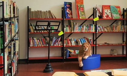 """Biblioteca dei ragazzi: non è in corso alcuno """"sfratto"""""""