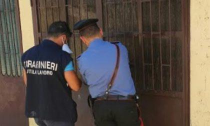 Caporalato e sfruttamento del lavoro a Giussago: coniugi 65enni denunciati, attività sospesa