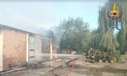 Incendio in un maneggio, 11 cavalli trovati senza vita FOTO