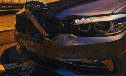 Automobilista pavese investe cerbiatto in autostrada: vivo per miracolo